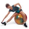 65 см гимнастический шар Боди Болл Gymnic